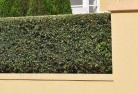 Balaclava NSW Hard landscaping surfaces 8